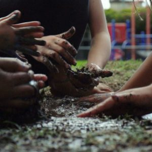 kids hands in the dirt - Let Them Eat Dirt